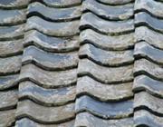 屋根のヒビやコケ